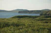 Bering Sea, St. Paul Island