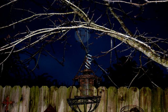 feeder with fake moon
