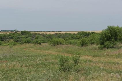 road through pasture