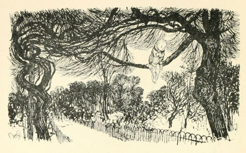 Peter in Kensington Gardens