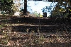 front yard burn